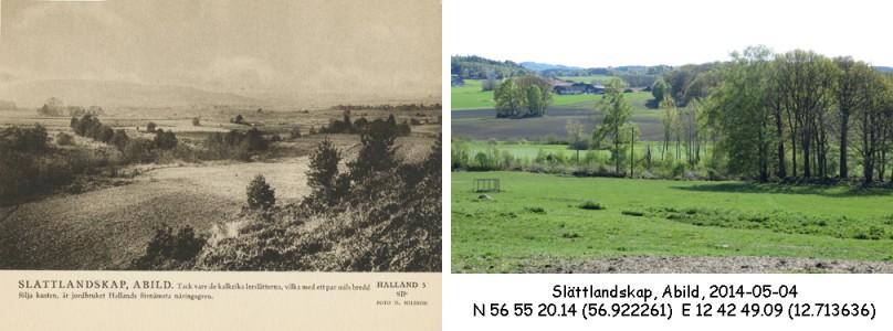 STF vykort nr 5 -Slättlandskap, Abild