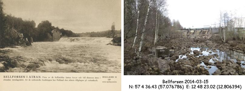 STF vykort nr 11 -Bellforsen i Ätran
