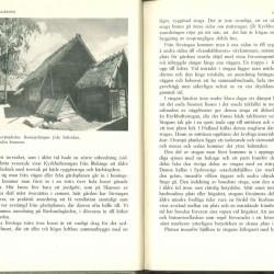 ''Guldkorn'' sid 12