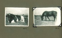 Hjalmars fotografialbum nr 2 sid 7 (22)