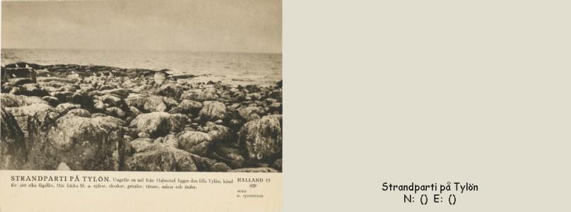 STF vykort nr 13 -Strandparti på Tylön